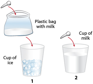 First Aid - Tooth - Transport in Milk